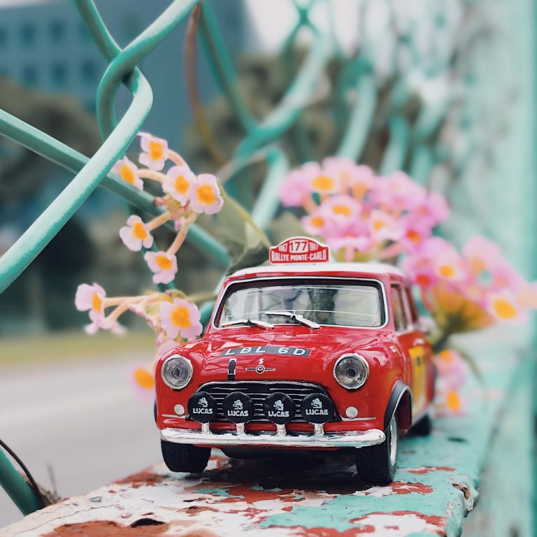 Flower and Mini Cooper